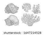 Seashell And Coral. Vector...