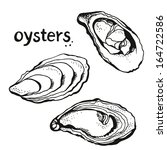 Oysters Set Isolated On A Whit...