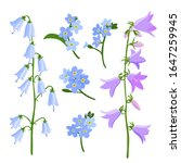 vector drawing bell flowers ...   Shutterstock .eps vector #1647259945