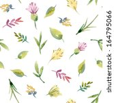 watercolor floral seamless... | Shutterstock .eps vector #164795066