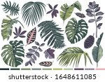 colorful hand drawn set of... | Shutterstock .eps vector #1648611085