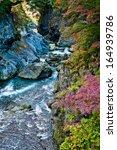 Japanese Mountain Stream In...
