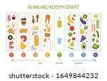 ph balance chart. alkaline acid ...   Shutterstock .eps vector #1649844232