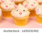 Easter Bunny Cupcakes On Pink...