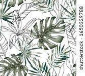 green monstera  outline palm... | Shutterstock .eps vector #1650329788