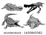 graphical set of hand drawn...   Shutterstock . vector #1650865582