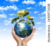 Ecology On Our Planet Earth