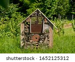 House For Insects On A...