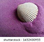 Purple Color Sand Shell...