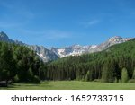 Landscape of green meadow, forested hills and distant snow-capped mountains in Colorado - stock photo
