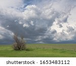 Spring agricultural landscape with dark storm clouds in the sky over a vast green field behind a partially dead willow and barbed wire fence on North America's Great Plains.