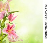pink lilies with copy space ... | Shutterstock . vector #165399542