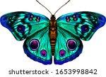 Butterfly Peacock Eye Green...