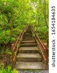 Wooden Stair That Climbs A Hil...