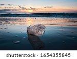 Plastic Bottle Litter And Tras...
