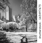 Central Park  New York City....