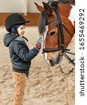Small photo of boy stroking horse, young jockey, horseback training on manege, lesson for young jockey in equestrian school or club, pet animal