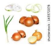 onion set  vector illustration | Shutterstock .eps vector #165572378