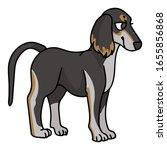 cute cartoon saluki puppy breed ...   Shutterstock .eps vector #1655856868