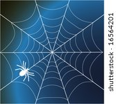 a spider and web  vector...   Shutterstock .eps vector #16564201