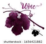 Illustration Of Vine With...