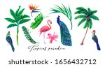 palm trees  tropical flowers ... | Shutterstock . vector #1656432712