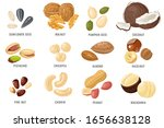 nuts and seeds. cashew and... | Shutterstock .eps vector #1656638128
