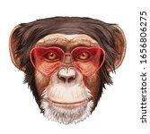 Monkey In Love  Portrait Of...