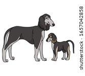 cute cartoon saluki and puppy...   Shutterstock .eps vector #1657042858