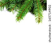 christmas tree branch isolated... | Shutterstock . vector #165714902