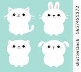 white cat kitten kitty  bear ...   Shutterstock .eps vector #1657435372