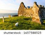 Ruin Of St Columba's Church ...