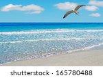 Seagull Flying Over La Pelosa...