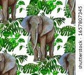 watercolor seamless pattern... | Shutterstock . vector #1657807345