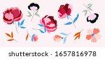variety of multicolour trendy...   Shutterstock .eps vector #1657816978