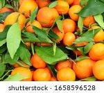 Fresh Orange Clementines With...