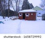 Cabin In The Back Yard