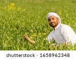 Farmer Sitting In Wheat Field...