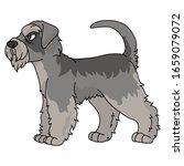 cute cartoon schnauzer dog...   Shutterstock .eps vector #1659079072