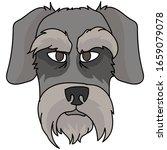 cute cartoon schnauzer dog face ...   Shutterstock .eps vector #1659079078