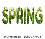 """the word """"spring"""" with green...   Shutterstock . vector #1659277975"""