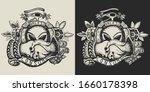 storm area 51. paleocontact.... | Shutterstock .eps vector #1660178398