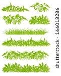 tropical exotic jungle grass... | Shutterstock .eps vector #166018286
