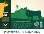 vector fresh beef packaging or... | Shutterstock .eps vector #1660242022