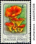 Hungary   Circa 1986  Stamp 4...