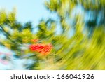 autumn leaves in radial motion | Shutterstock . vector #166041926