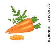 carrot vector illustration.... | Shutterstock .eps vector #1660435978