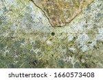 Surface Texture Of A An...