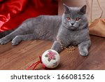 Stock photo fluffy gray cat playing with the christmas tree decorations on holiday theme image of british cat 166081526