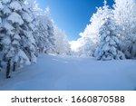 Uludag Winter Landscape Snow...